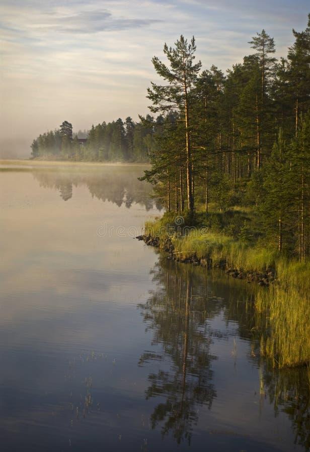 De mist van de ochtend in Zweden royalty-vrije stock fotografie