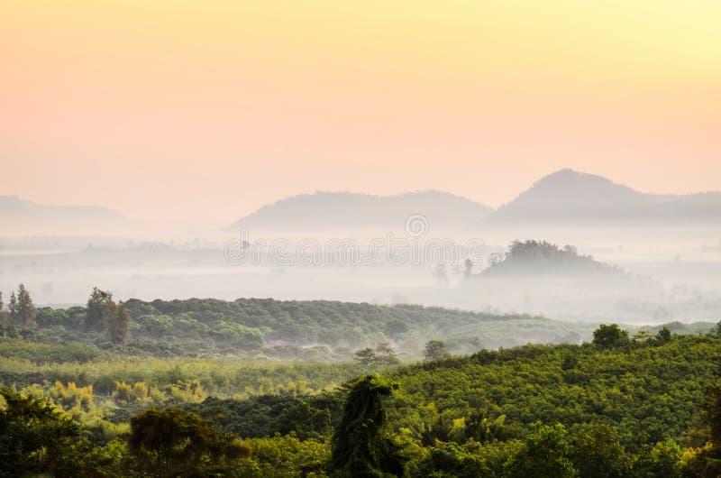 De mist van de ochtendberg royalty-vrije stock afbeelding