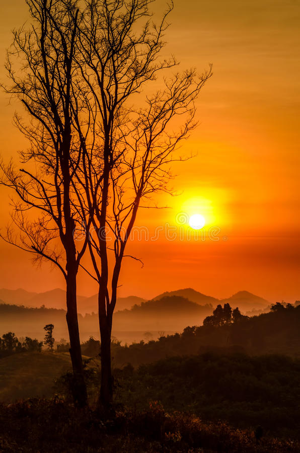 De mist van de ochtendberg royalty-vrije stock foto's