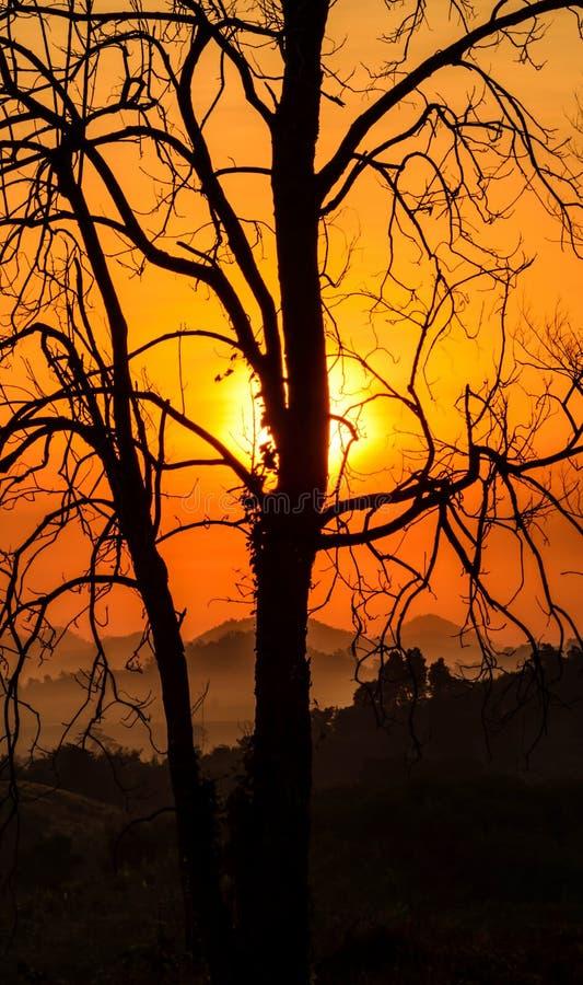 De mist van de ochtendberg royalty-vrije stock afbeeldingen