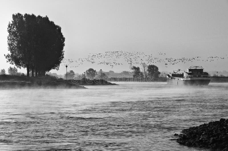 De mist van de ochtendrivier stock foto's