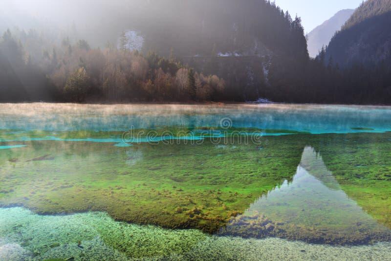 De mist van het de ochtendmeer van Jiuzhaigou royalty-vrije stock foto's