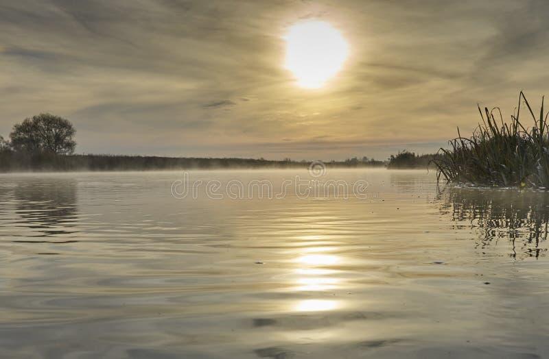 De mist van de ochtend over de rivier royalty-vrije stock foto