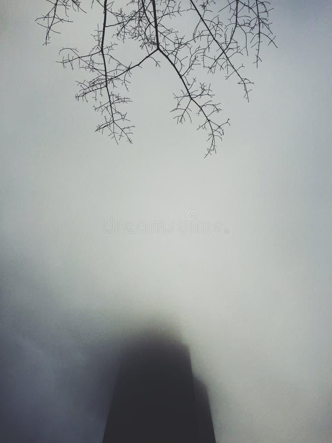 De mist van Seattle stock foto's