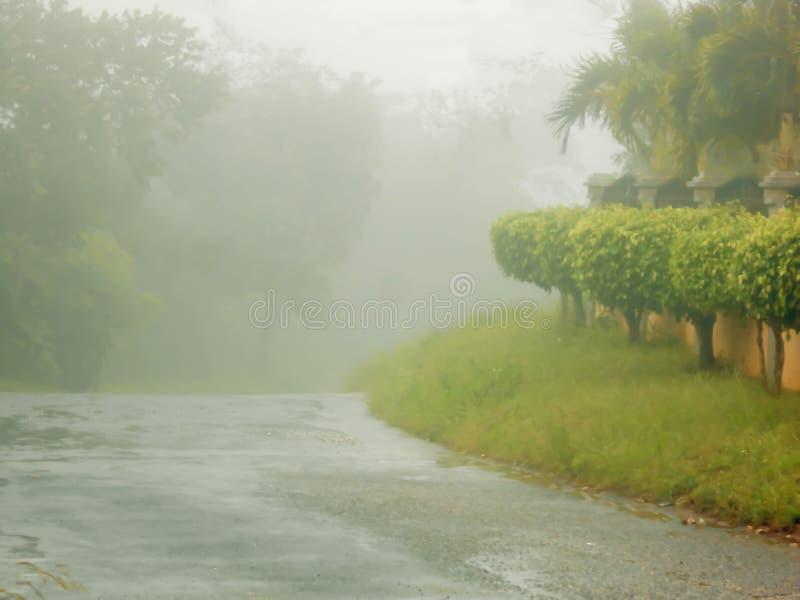 De mist volgt Regen op de Regenachtige dossiers van de Dagtaak royalty-vrije stock foto's