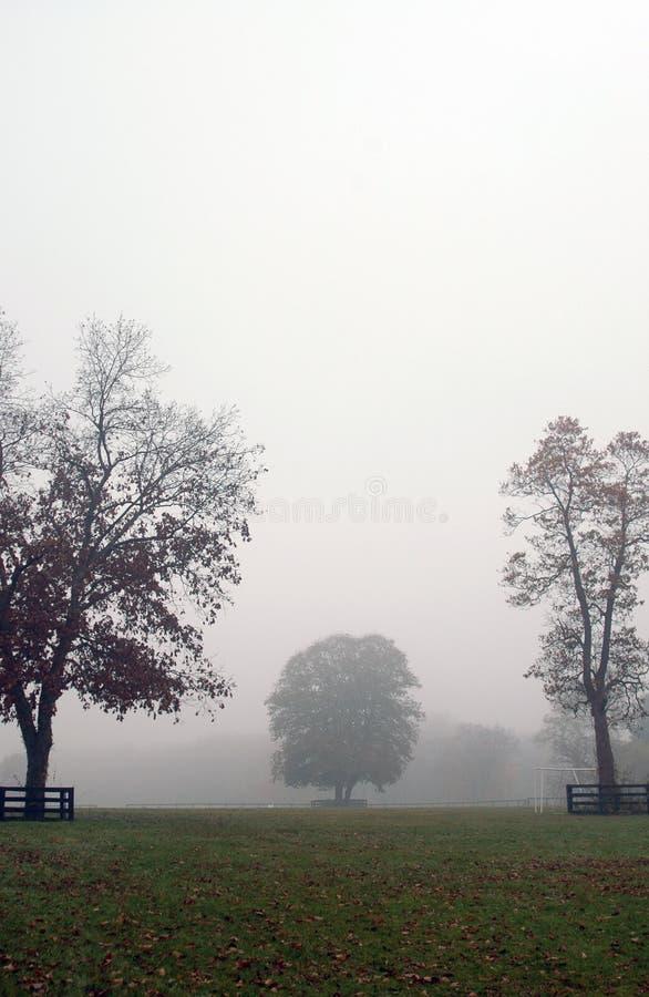De mistige scène van de herfst royalty-vrije stock foto's