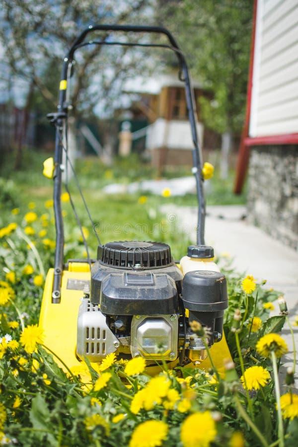 De moderne benzine dreef de tribunes van de grasmaaimachine op vers groen gazon in de zomertuin aan stock foto's