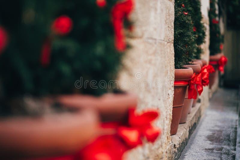 De modieuze decoratie van de Kerstmisstraat, groene spartakken met Re stock afbeeldingen