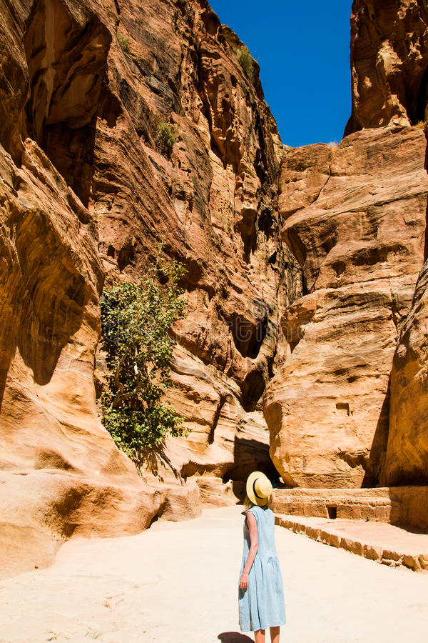 De modieuze vrouwelijke toerist in in hoed en de hemel-blauwe kleding onderzoeken canion Siq die tot de Schatkist, Al Khazneh lei royalty-vrije stock fotografie