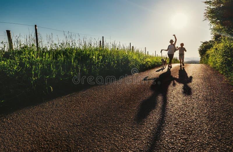 De moeder, de zoon en de hond lopen op de zonsondergangweg van het land en maken grappig c royalty-vrije stock afbeeldingen