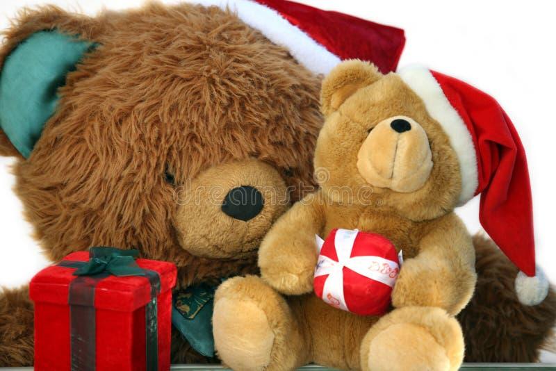 De moeder en de baby van de teddybeer stock foto's