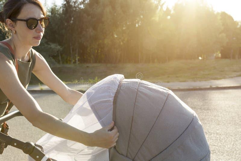 De moeder schikt klamboe op babywandelwagen Het behandelen van a stock afbeelding