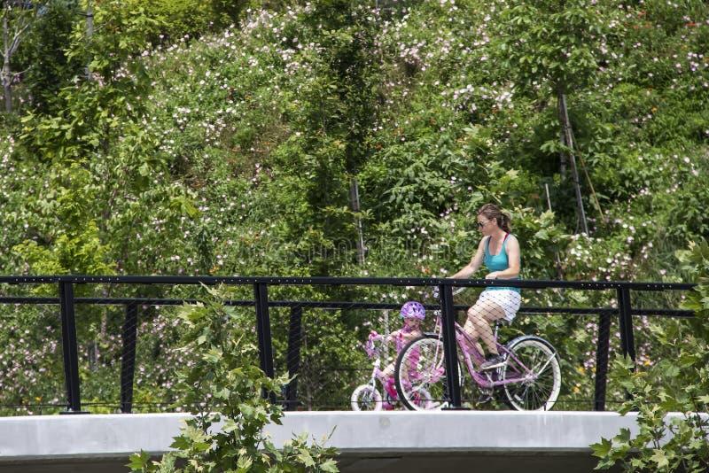 De Moeder van Tulsaoklahoma de V.S. 5 26 2019 en uiterst kleine dochter allebei op roze fietsen dwarsbrug die door weelderig gebl stock foto's