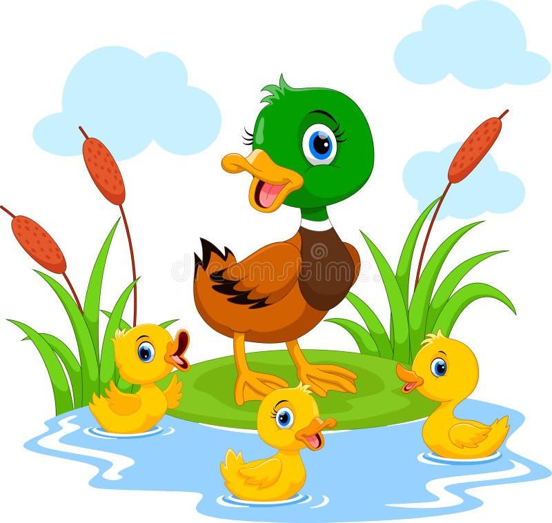 De moedereend zwemt met haar drie kleine leuke eendjes in de vijver Grappig en aanbiddelijk royalty-vrije illustratie