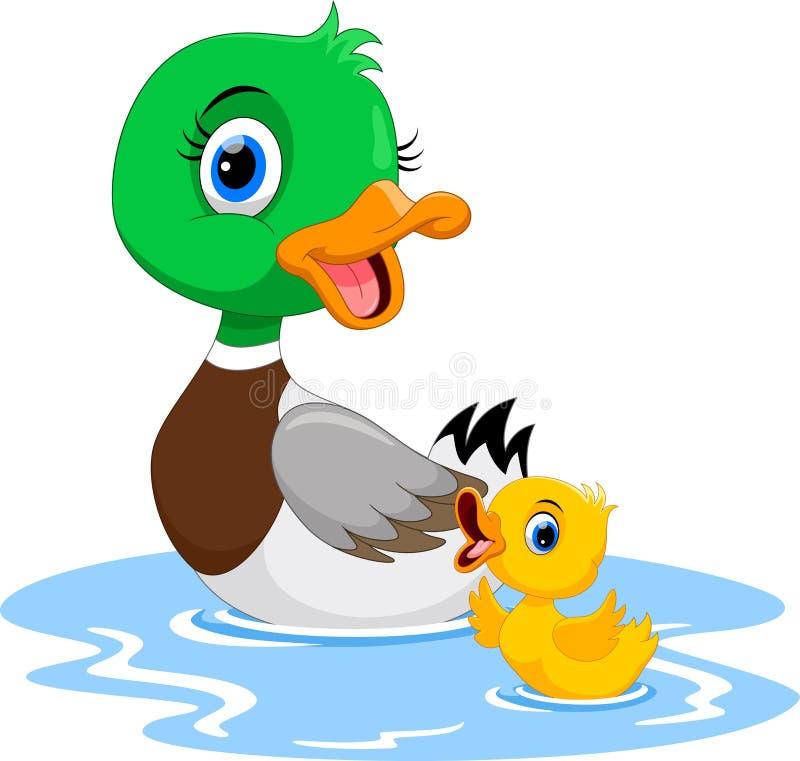De moedereend zwemt met haar kleine leuke eendjes Grappig en aanbiddelijk royalty-vrije illustratie