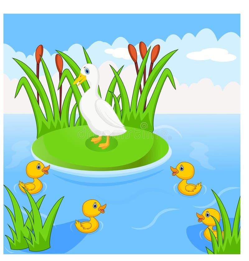 De moedereend zwemt met haar vier kleine leuke eendjes in de rivier royalty-vrije illustratie