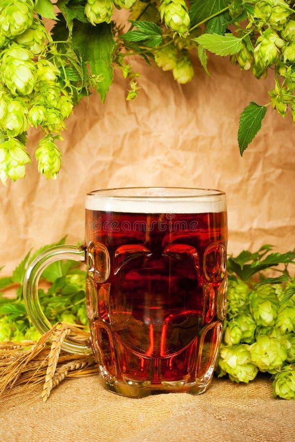 De mok van het bier met hop en tarwe stock afbeeldingen