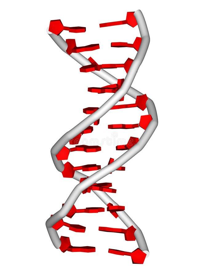 De molecule van DNA stock illustratie