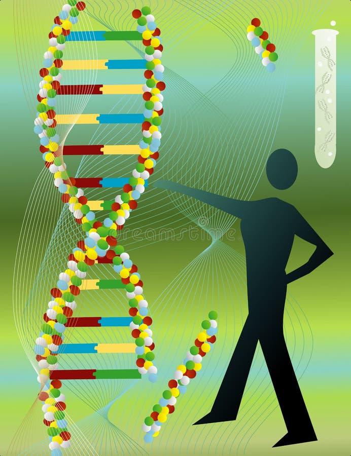 De Molecule van DNA royalty-vrije illustratie