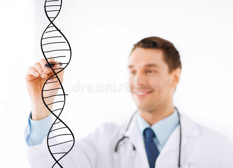 De molecule van DNA van de artsentekening op het virtuele scherm stock foto