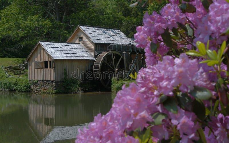 Download De molen stock foto. Afbeelding bestaande uit molen, water - 25564