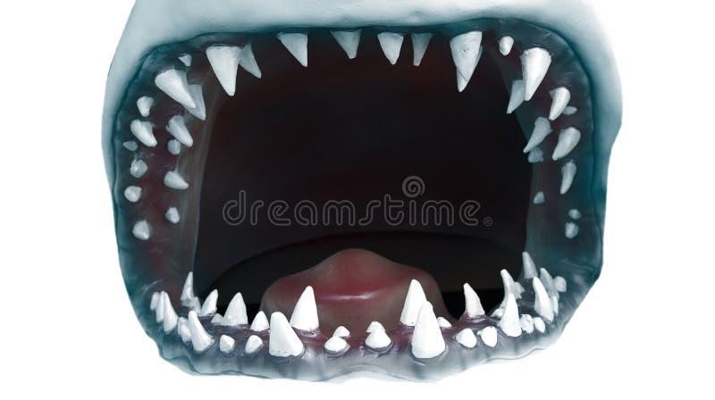 De mond van de haai royalty-vrije stock foto