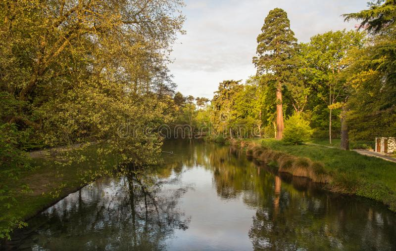 De mooie aard langs de rivier van Avon van Christchurch, Nieuw Zeeland stock fotografie
