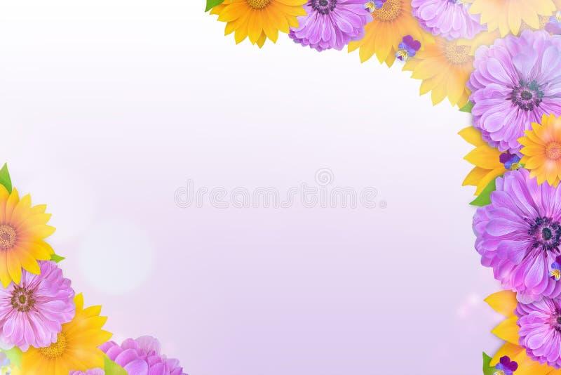 De mooie achtergrond van de de lenteaard met bloesem, bloemblaadje en bokeh op purpere achtergrond Kader van bloemen royalty-vrije stock afbeeldingen