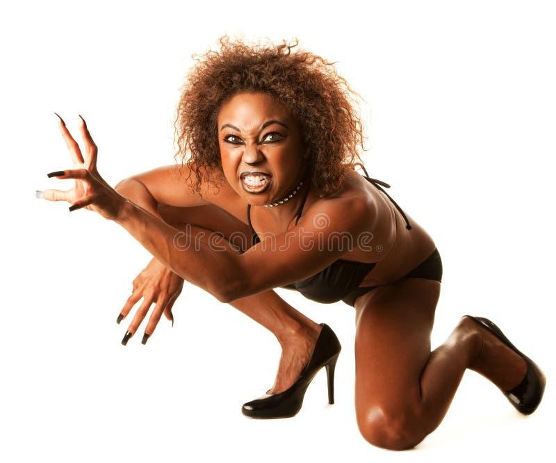 De mooie Afrikaans-Amerikaanse Vrouw van de Kat stock afbeelding