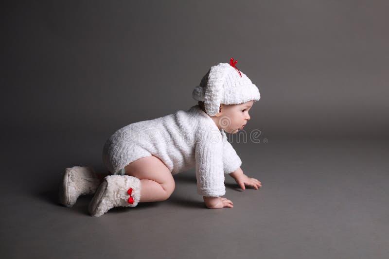 De mooie baby in breit kleding en GLB stock afbeeldingen