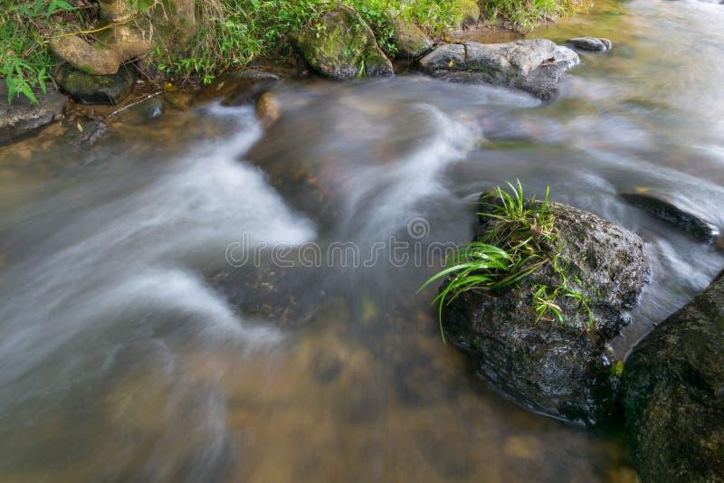 De mooie beek van watervallen valt neer met rots en kleine groene boom in natuurlijk stock foto