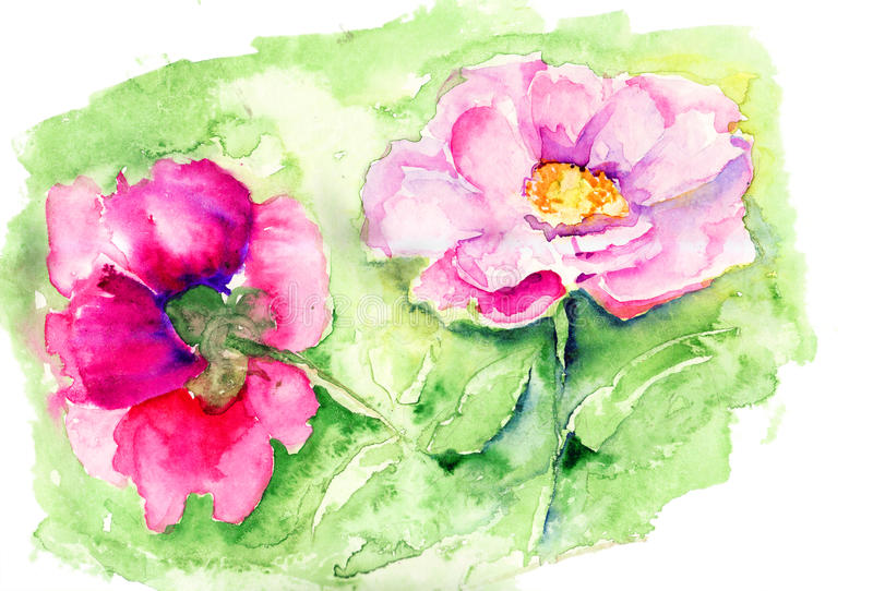 De mooie bloem van de Pioen royalty-vrije illustratie