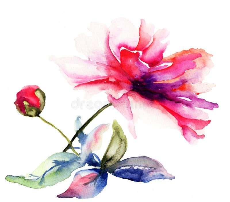 De mooie bloem van de Pioen vector illustratie