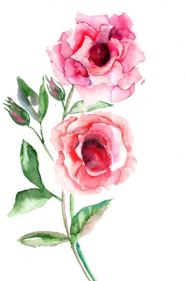 De mooie bloemen van Rozen royalty-vrije illustratie