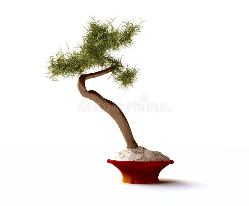 De mooie Boom van de Bonsai stock illustratie