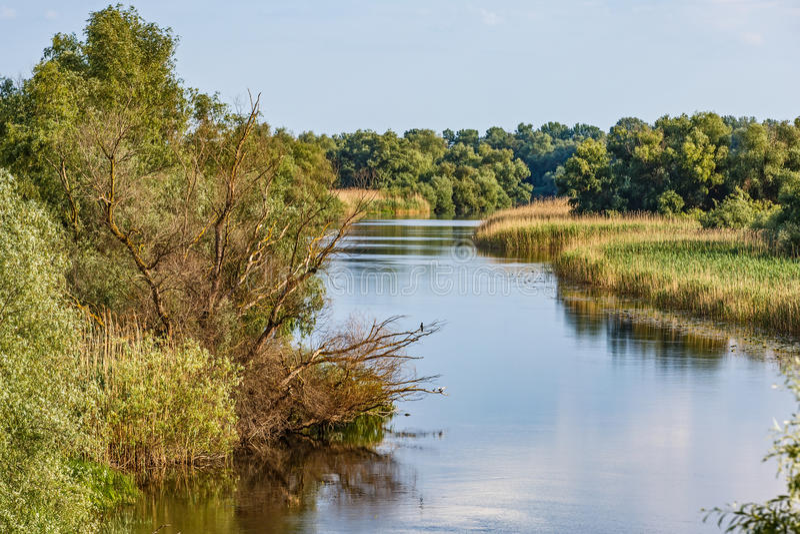 De mooie Delta van Donau stock foto's