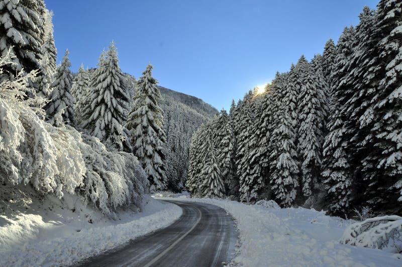 De mooie fotografie van het de winterlandschap royalty-vrije stock fotografie