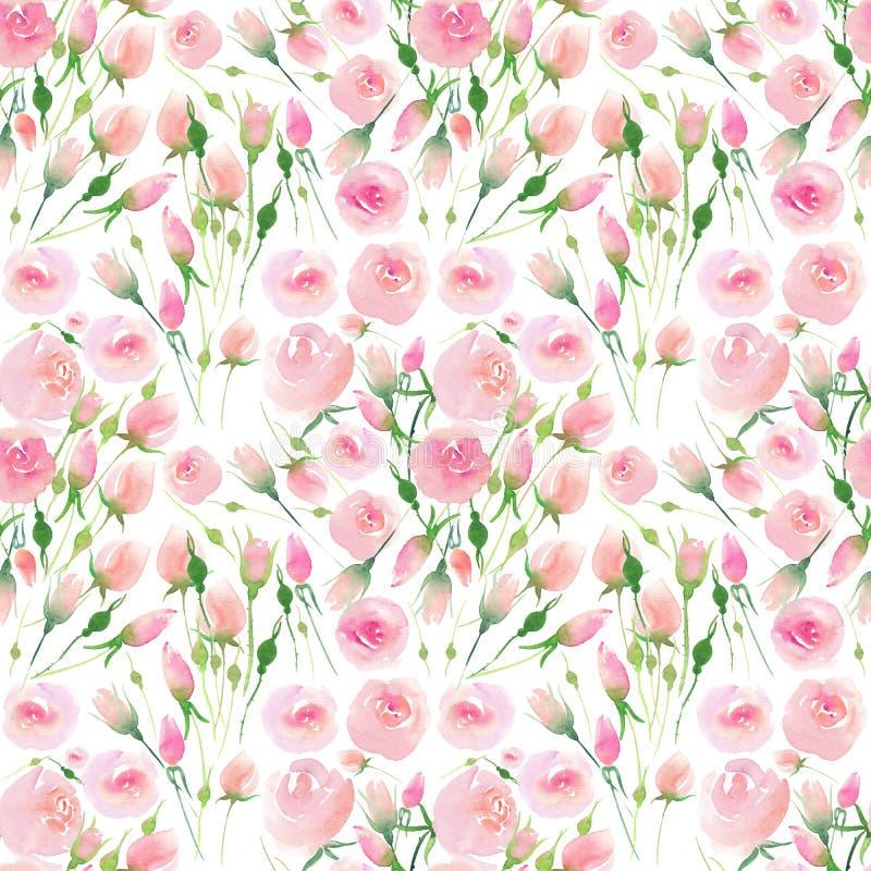 De mooie gevoelige tedere leuke elegante mooie bloemen kleurrijke roze en rode rozen van de de lentezomer met knoppen en bladeren stock illustratie