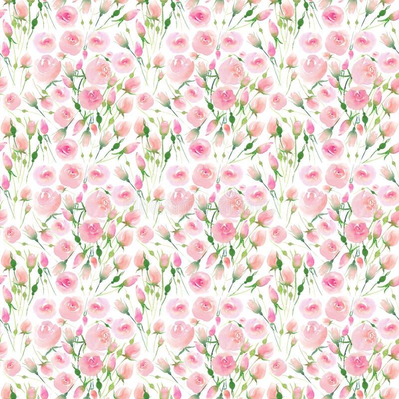 De mooie gevoelige tedere leuke elegante mooie bloemen kleurrijke roze en rode rozen van de de lentezomer met knoppen en bladeren royalty-vrije illustratie
