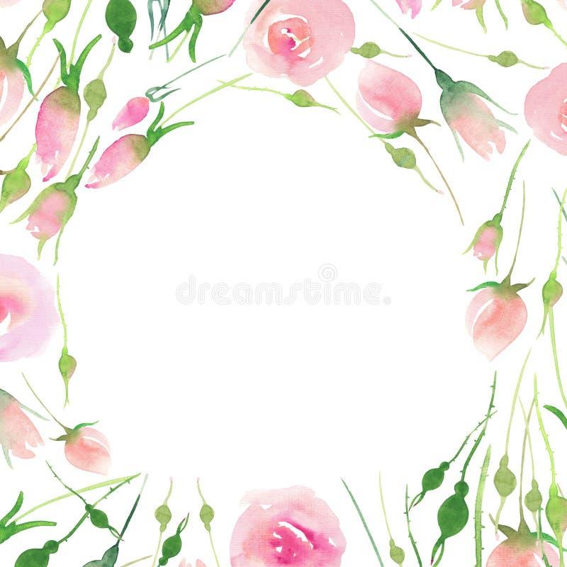 De mooie gevoelige tedere leuke elegante mooie bloemen kleurrijke roze en rode rozen van de de lentezomer met knoppen en gele bla royalty-vrije illustratie