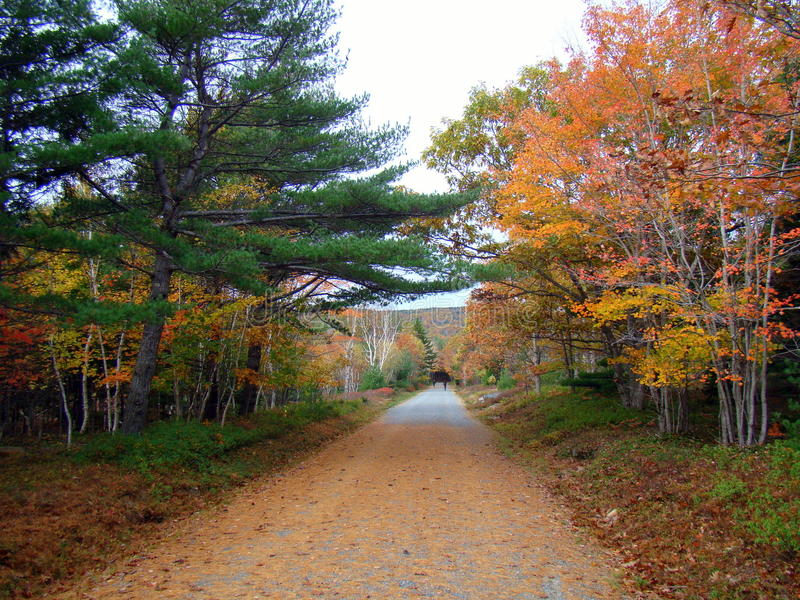 De mooie herfst in het Nationale Park van Acadia, Maine royalty-vrije stock foto