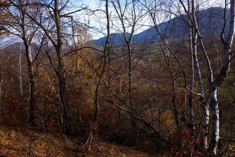 De mooie herfst op de manier aan het dorp royalty-vrije stock afbeelding