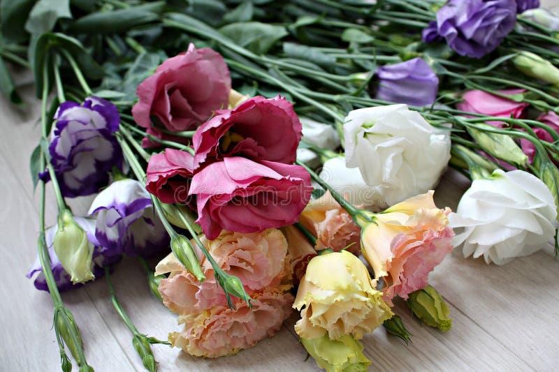 de mooie het boeketkleur van de schoonheidsbloei creen de bloementuin van de droomflora stock foto's