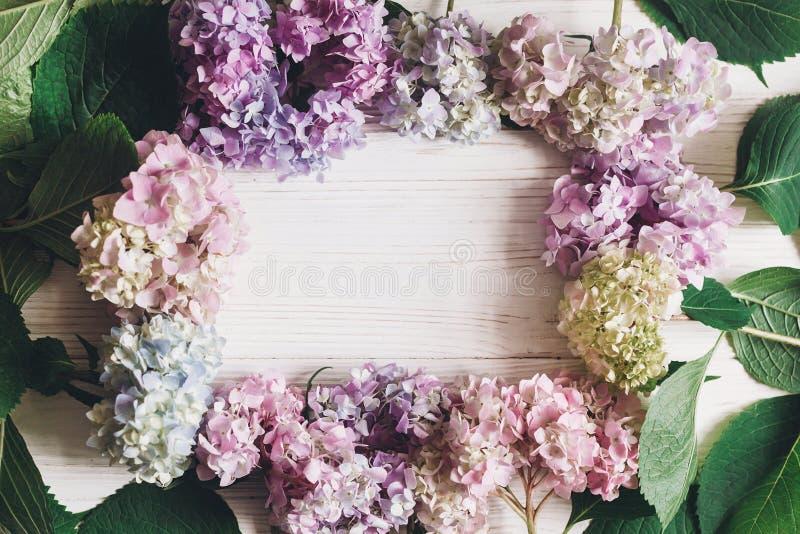De mooie hydrangea hortensia bloeit kader op rustiek wit hout, leg vlak Kleurrijke roze, blauwe, groene, witte hydrangea hortensi royalty-vrije stock afbeelding