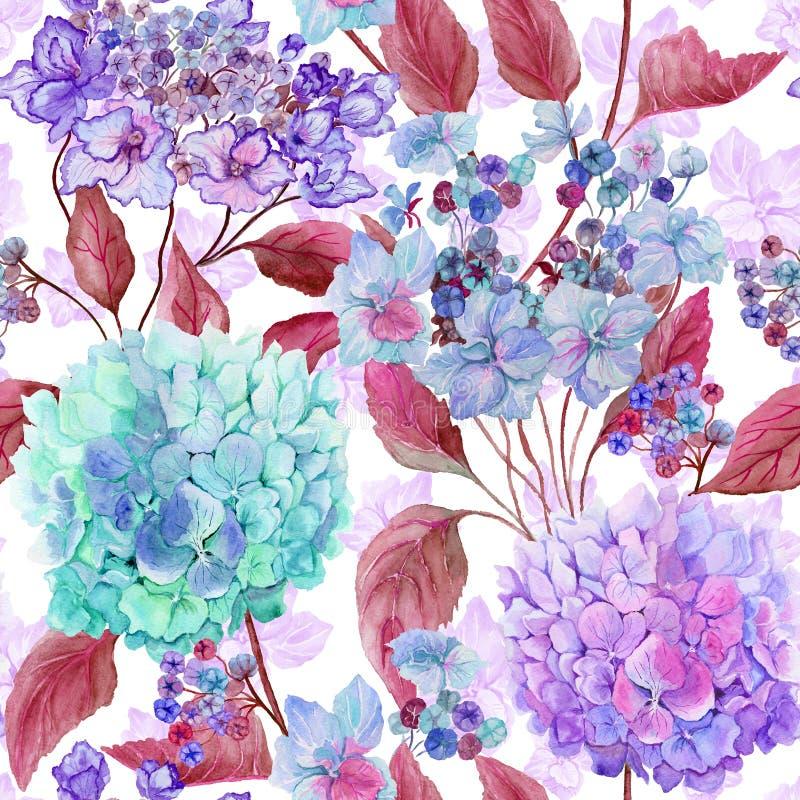 De mooie hydrangea hortensia bloeit in roze, lilac, purpere tinten op witte achtergrond Naadloos zacht bloemenpatroon Het Schilde royalty-vrije illustratie