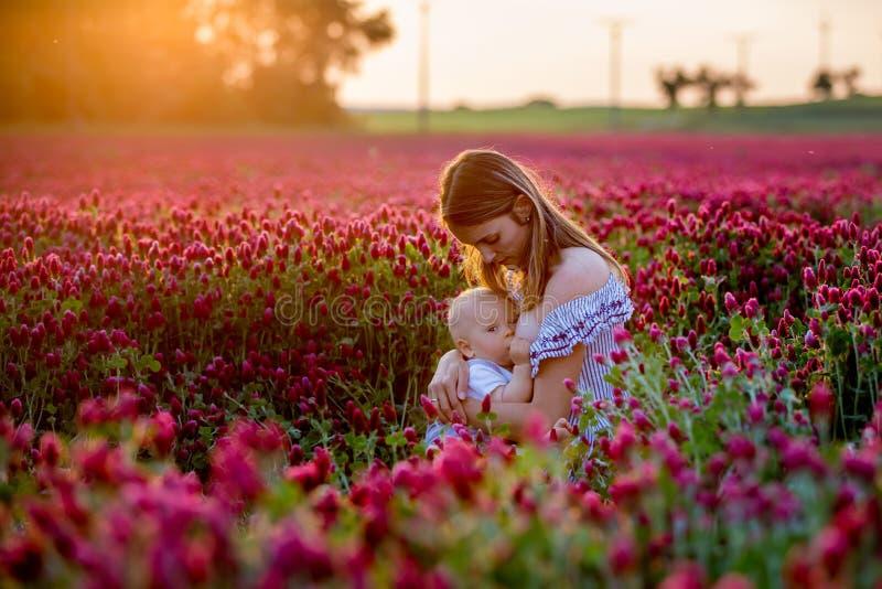 De mooie jonge moeder, die haar jongen van de peuterbaby binnen de borst geven gaat stock afbeelding