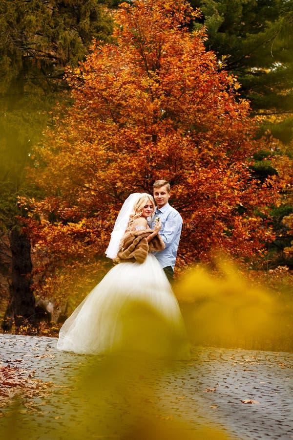De mooie jonge tribune van het huwelijkspaar samen gelukkig in een park binnen stock foto's