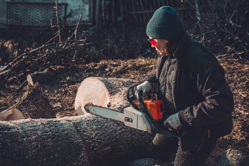 De mooie jonge vrouw in glazen snijdt een grote boom van as op hout voor de winter stock afbeelding