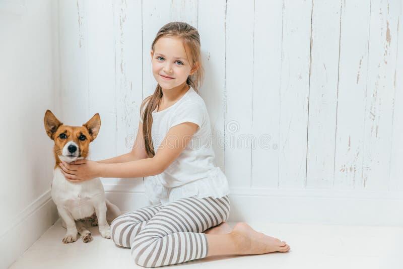 De mooie kleine vrouwelijke kindspelen met haar hond in witte ruimte, zitten stock foto's