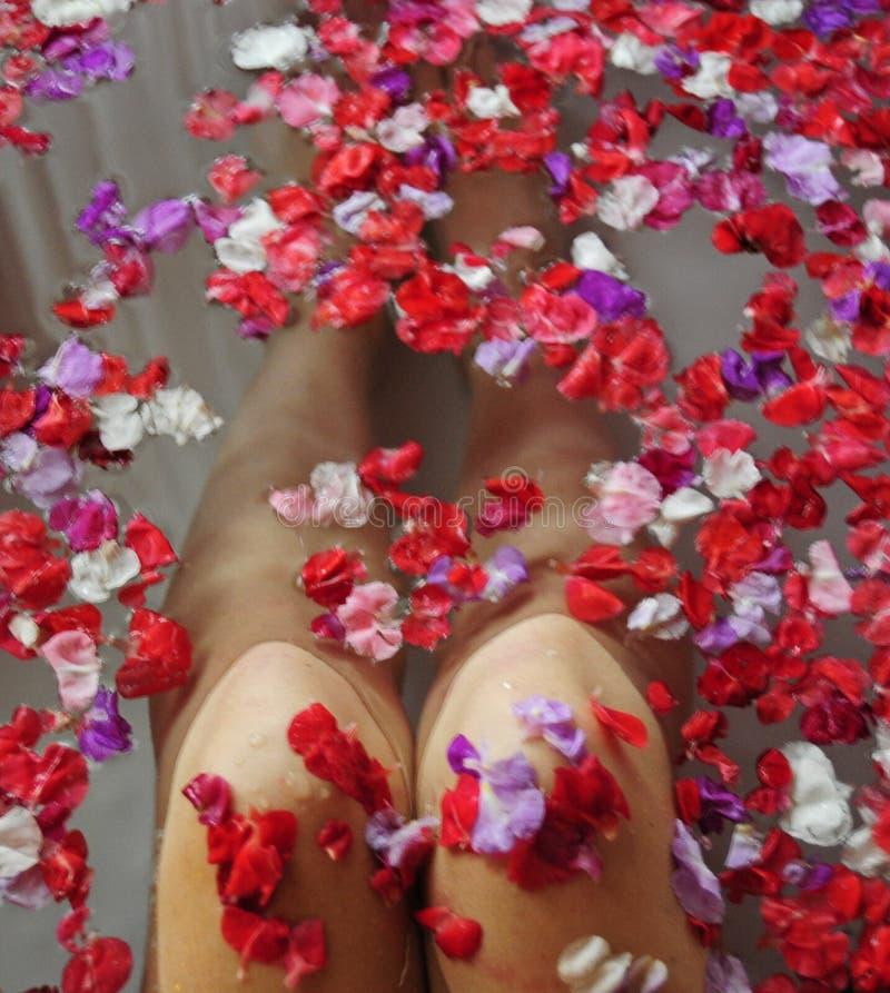 De mooie knieën van de vrouw in water met bloemen stock afbeeldingen